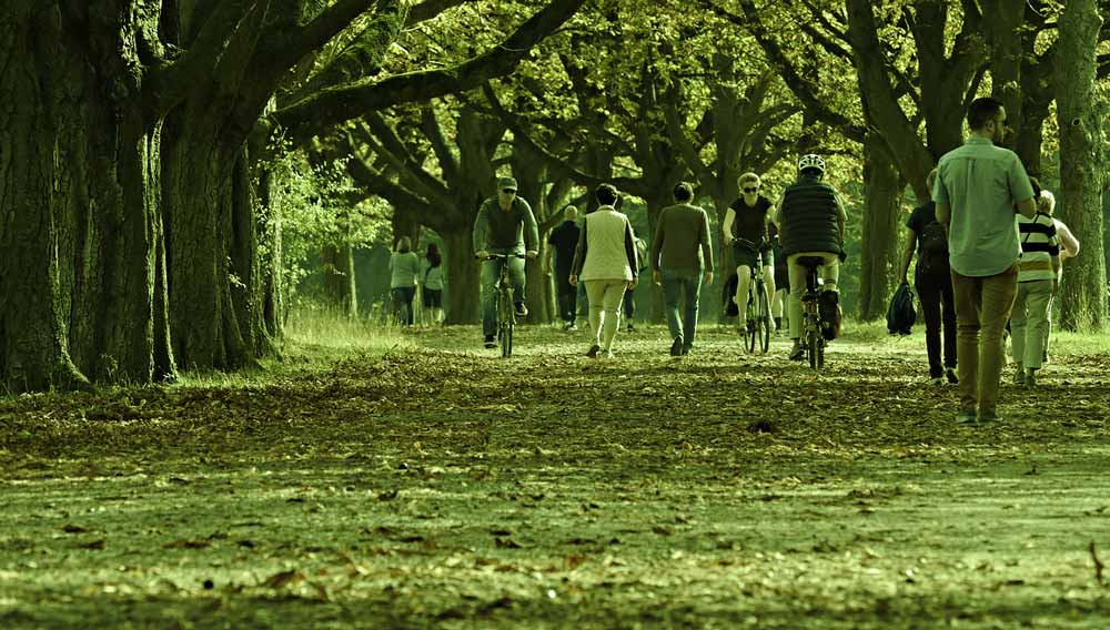 A bunch of people are out in the leaves, walking and riding their bikes.